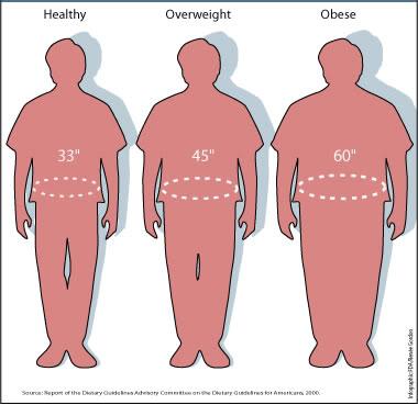 male waist sizes