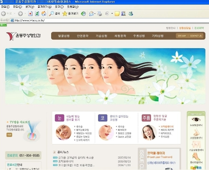 Korean Cosmetic Surgery Clinic Website